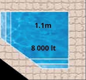 Mars Pool Shape