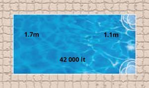 Sahara Pool Shape