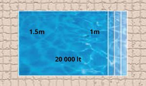 Neptune Pool Shape