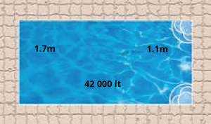Sahara Pool Shape